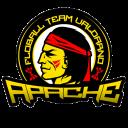 Apache Valdarno Floball